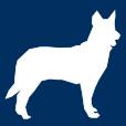 dog-small-icon-retina