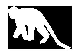 monkey-icon-retina